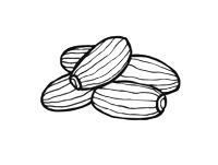 NoyNuts gedroogd fruit