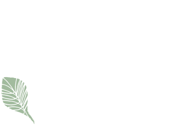 Noy Love Nature